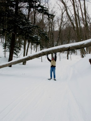 Hands-free, with snowshoes!