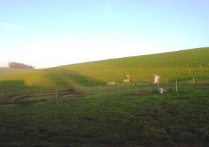 Emu Views